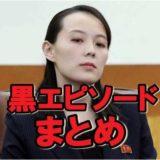 金与正(キムヨジョン)の性格が怖い